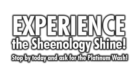 Experience Sheenology